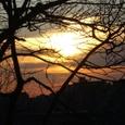 Berri-UQAMの校舎から見る夕日
