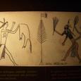 カナダ文明博物館の展示品2