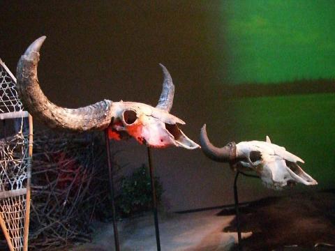 カナダ文明博物館の展示品3